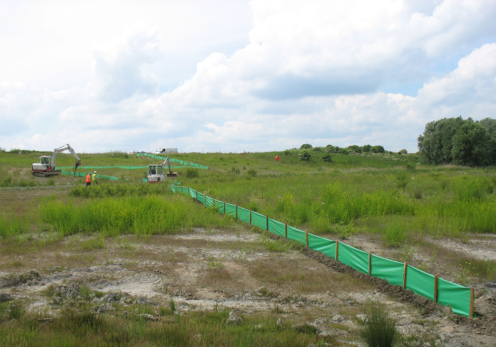 Great Crested Newt fencing