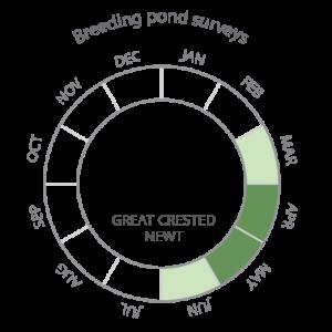 Breeding pond surveys-02