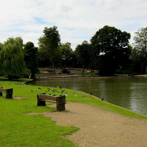 Forty Hall Pond
