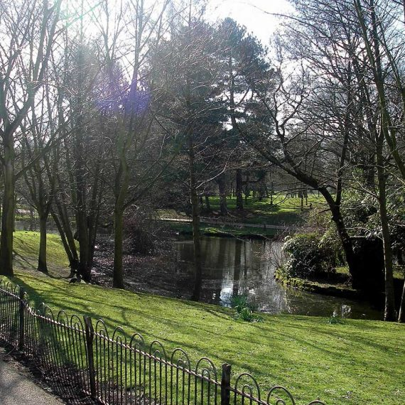 Waterbodies-at-Sefton-Park