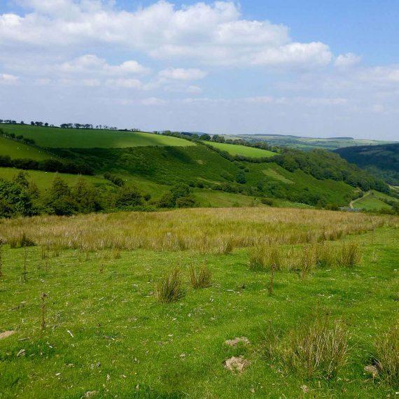 Garreg-Lwyd-Site
