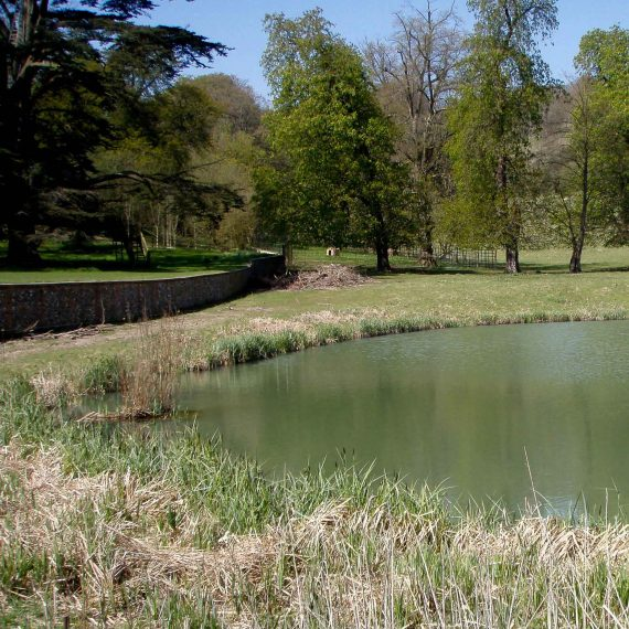 Garsington-pond
