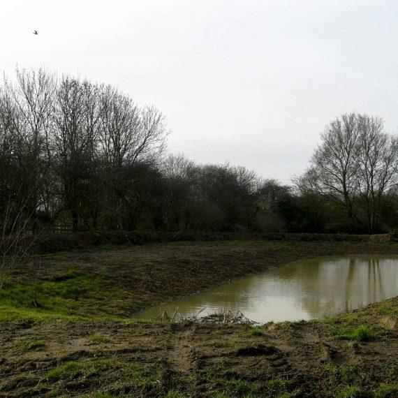 Pond-creation