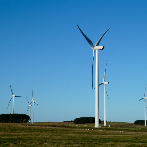 Wandylaw wind farm