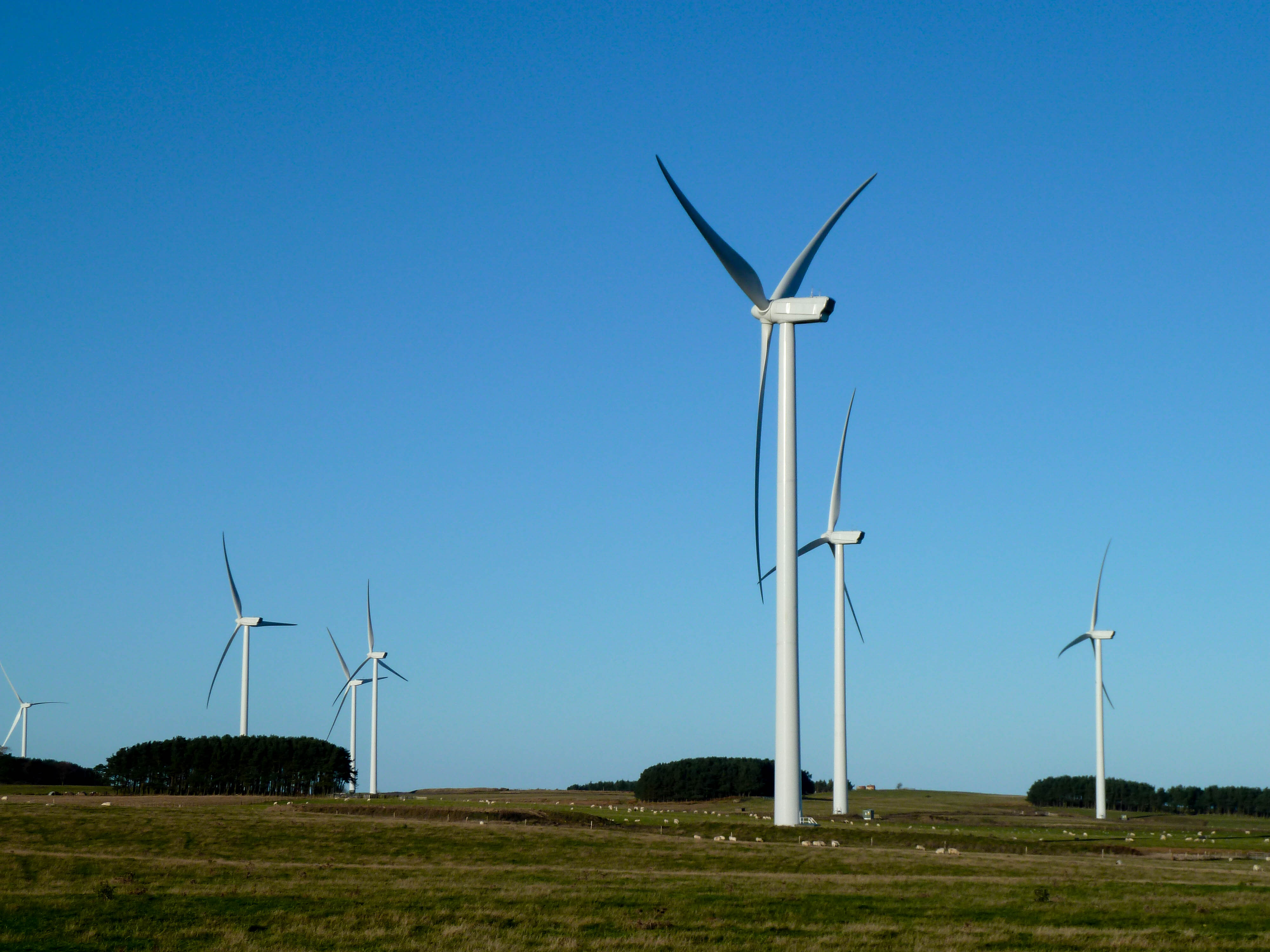 Wandylaw wind farm
